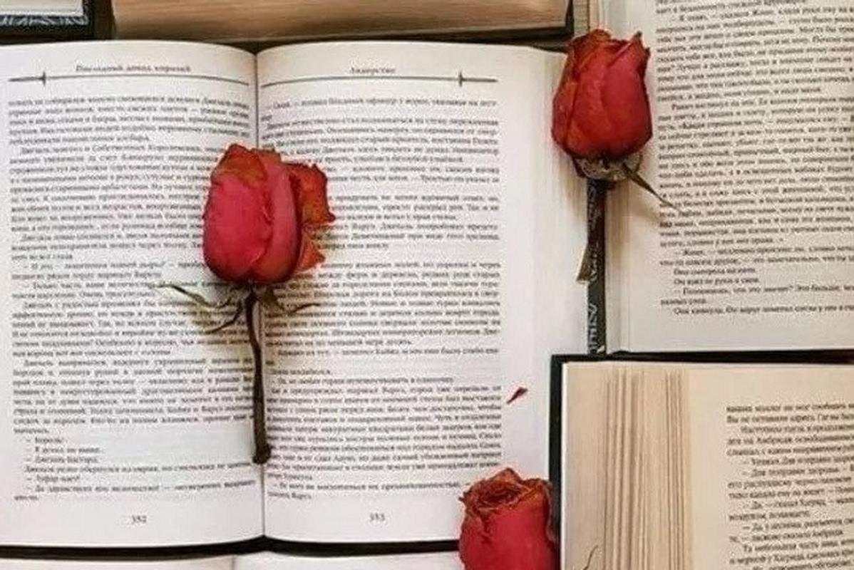 Open Boeken Dag