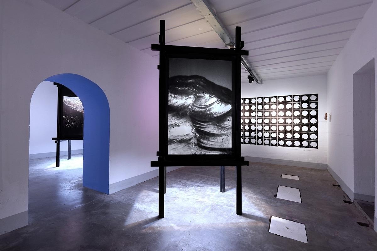 Foto bij Tentoonstelling 'Het landschap dat ik ken'